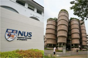 Guide to University Terms Used – Honours/Major/Minor/etc (NUS/NTU/SMU)